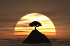 The sunset tree. A tree on the mountain above the clouds with sunset on the background Stock Illustration
