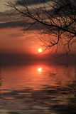 Sunset and tree branch over water. View Royalty Free Stock Photo
