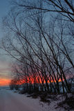 Sunset with tree shadow. And snow Stock Photography