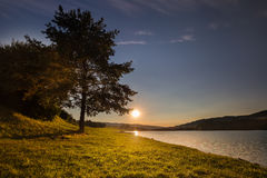 Sunset and tree by the shore of water stock photo