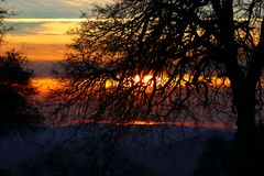 Sunset. A sunset through the trees at dusk Stock Photo