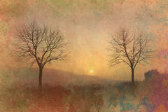 Sunset and trees grunge background. Two trees at sunset grunge wallpaper Stock Photos