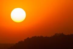 Sunset Trees Landscape Stock Image
