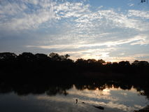 Sunset between the trees. Photo take in Sorriso, Mato Grosso - Brazil stock photography