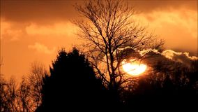 Sunset between trees and red yellow clouds stock video footage