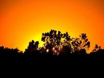 Sunset, Trees, Silhouette, Dusk Stock Photography