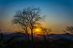 The sunset with trees silhouetted Stock Photography