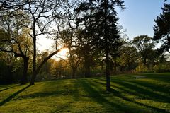 Sunset through the Trees. Sun shining through the trees in the evening at Phalen Regional Park in Minnesota royalty free stock photos