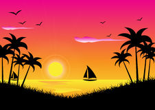 Sunset Tropical Royalty Free Stock Images