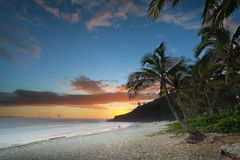 Sunset on tropical beach Stock Image