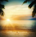 Sunset tropical beach Stock Photography