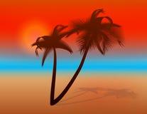 Sunset on tropical beach Stock Photos