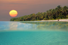 Sunset on tropical beach island. With underwater view,  Caribbean sea, Bocas del Toro, Panama Royalty Free Stock Photo
