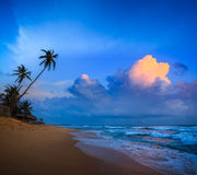 Sunset on tropical beach Royalty Free Stock Photos