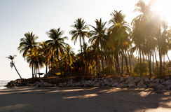 Sunset on tropical coastline Royalty Free Stock Image