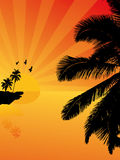 Sunset on a tropical island. Vector illustration Royalty Free Stock Photo