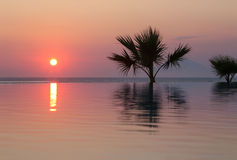 Sunset in tropical paradise Stock Photography