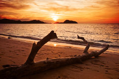 Sunset of tropical sea Stock Photography
