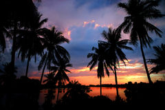 Sunset in Tropics Royalty Free Stock Images