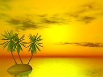 Sunset in tropics Royalty Free Stock Photo