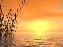 Sunset_Trost ilustração stock
