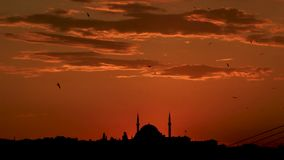Sunset in Turkey. A mosque and birds in the sunset of Turkey in wideshot stock video