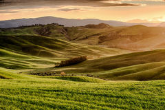 Sunset in Tuscany Royalty Free Stock Photo