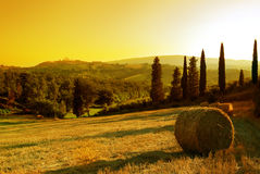 Free Sunset Tuscany Landscape Stock Photography - 5675122