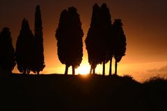 Sunset in Tuscany. The sun against the silhouette of some cypresses in Tuscany Royalty Free Stock Photography