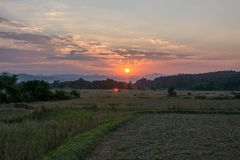 Sunset twilight of green rice field in Pua. The  northern of Thailand Royalty Free Stock Image