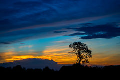 Sunset twilight time at Somdet Kalasin Thailand. Sunset twilight time with silhouette tree at Somdet Kalasin Thailand Royalty Free Stock Image