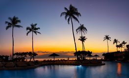 Sunset with two shells and ocean water. Sunset in Hawaii with pal. trees and resort during sunset Stock Photo