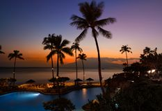 Sunset with two shells and ocean water. Sunset in Hawaii with pal. trees and resort during sunset Stock Image