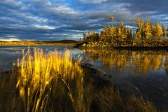 Sunset under the lake and forest Stock Images