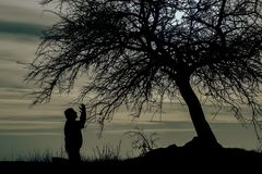 The Man silhouette. At sunset under the tree the man who prayed Stock Photography