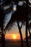 Sunset vacation. Sunset in hotel vacations with palm trees stock images