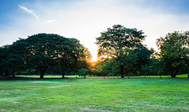 Sunset in Vachirabenjatas Park Rot Fai Park Royalty Free Stock Images