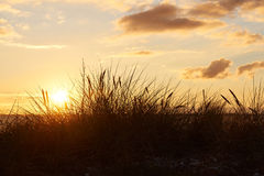 Sunset at Vadum Beach in Salling, Denmark - series. Colorful sunset at Vadum beach in Salling, Denmark. Grass in front of sunset Royalty Free Stock Photo