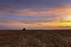 Sunset in the vast Bulgaria Royalty Free Stock Images