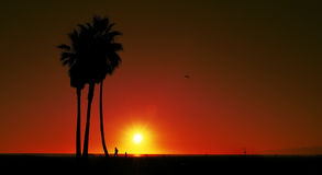 Sunset on Venice Beach, United States Stock Photography