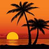 Sunset view in beach with palm tree silhouette. Summer holidays background. Seaside View Poster. Vector beach resort wallpaper Stock Images