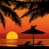 Sunset view in beach with palm tree Stock Images