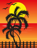 Sunset View In Beach. Vector illustration of sunset view in a beach with palm trees Royalty Free Stock Photo