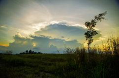 Nature sunset view at field with gray cloud Royalty Free Stock Photo