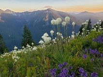 Granite Mountain in Spring Time royalty free stock image