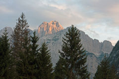 Sunset view of mountain in Julian Alps. Mountains and trees at sunset in Valbruna, near Tarvisio, Italy Stock Image