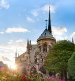 Sunset view of Notre Dame De Paris cathedral. Royalty Free Stock Photography