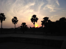 Sunset View. With palm trees in Sikandra royalty free stock image