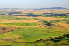 Sunset view of Palouse Royalty Free Stock Photography