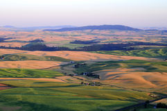 Sunset view of Palouse Stock Photos